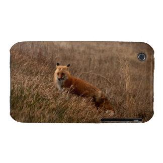 Fox en la hierba funda para iPhone 3 de Case-Mate