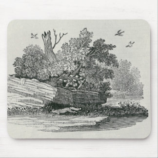 Fox escaping,'The General History of Mouse Pad