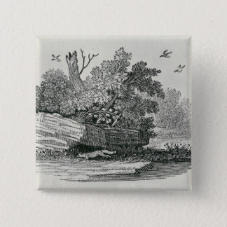 Fox escaping,'The General History of Pinback Button