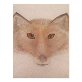 Fox face postcard