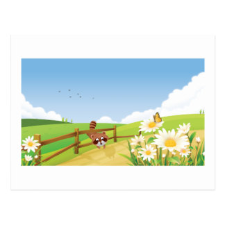 Fox Foxes Summer Blue Sky Nature Happy Flower Cute Postcard