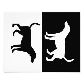 fox hound photo print