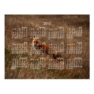 Fox in the Grass; 2013 Calendar Postcard