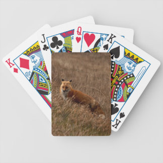 Fox in the Grass Bicycle Card Deck