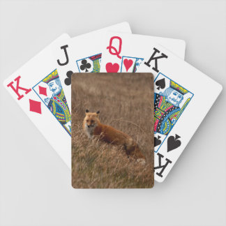 Fox in the Grass Bicycle Card Decks