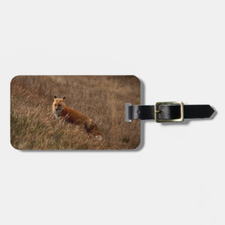 Fox in the Grass Tags For Luggage
