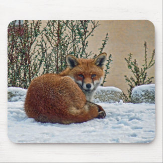 Fox in the snow mouse mat