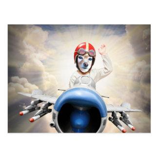 Fox Is A Kiddy Plane Pilot Postcard
