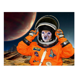 Fox Is An Astronaut #2 Postcard
