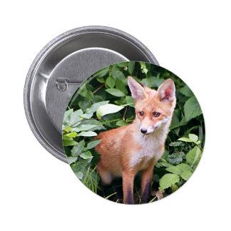 Fox joven 1 pins