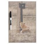 Fox Loves Utility Pole; 2013 Calendar Dry Erase Whiteboard