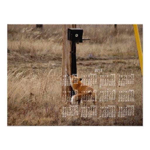 Fox Loves Utility Pole; 2013 Calendar Photo Print