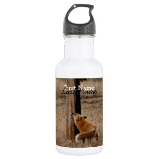Fox Loves Utility Pole; Customizable Stainless Steel Water Bottle