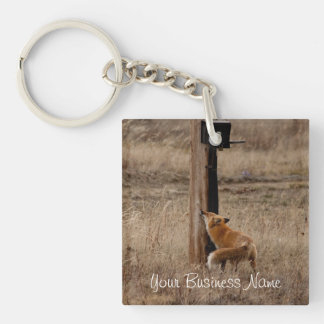 Fox Loves Utility Pole; Promotional Keychain