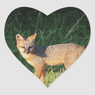 Fox magnífico pegatinas