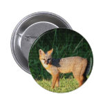 Fox magnífico pins
