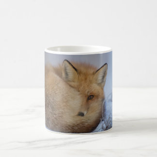 Fox mug, foxy mug, foxes, nature, wildlife coffee mug