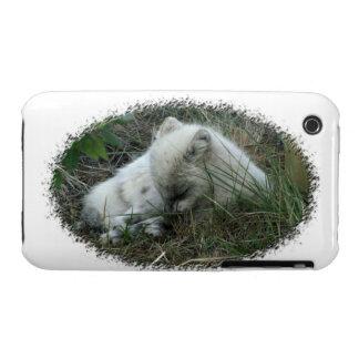 Fox Naptime iPhone 3 Case-Mate Case
