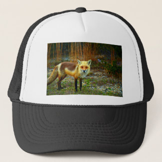 Fox on Grass Trucker Hat