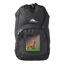 Fox on meadow high sierra backpack