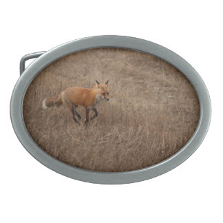 Fox on the Run Belt Buckles
