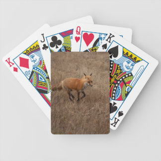 Fox on the Run Bicycle Playing Cards