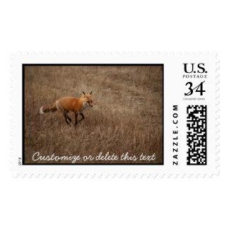 Fox on the Run; Customizable Postage