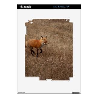 Fox on the Run Decal For iPad 2