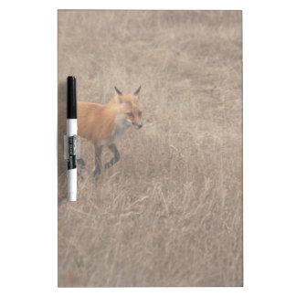 Fox on the Run Dry Erase Whiteboards