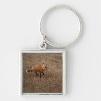 Fox on the Run Keychain