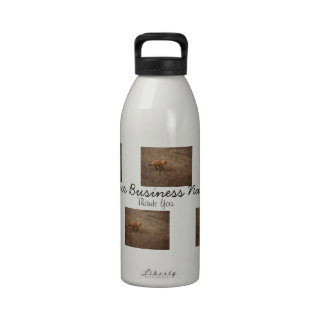 Fox on the Run; Promotional Reusable Water Bottle