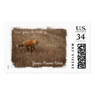 Fox on the Run Stamps