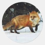 Fox Pegatinas