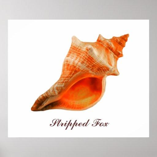Fox pelado póster