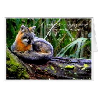 FOX PHILOSOPHY CARD