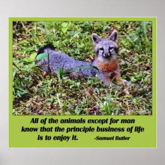 FOX PHILOSOPHY POSTERS
