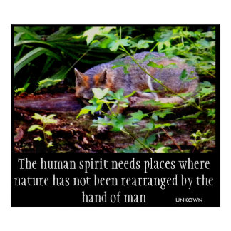 FOX PHILOSOPHY PRINT