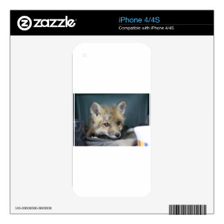 Fox Phone Case Decal For The iPhone 4S