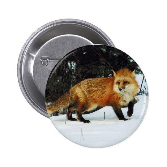 Fox Pinback Button