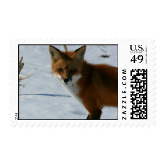 Fox Postage