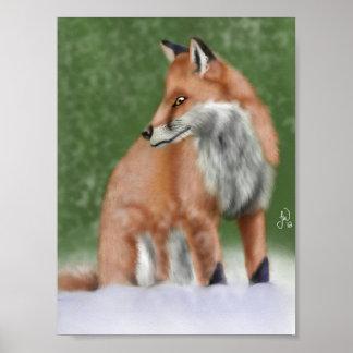 Fox Póster