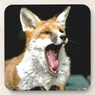 Fox - pro photo coaster