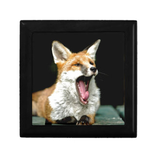 Fox - pro photo jewelry boxes