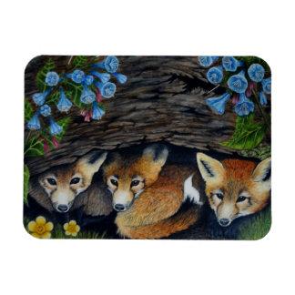Fox Pups Magnet