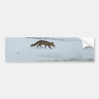 Fox que camina en nieve pegatina para auto