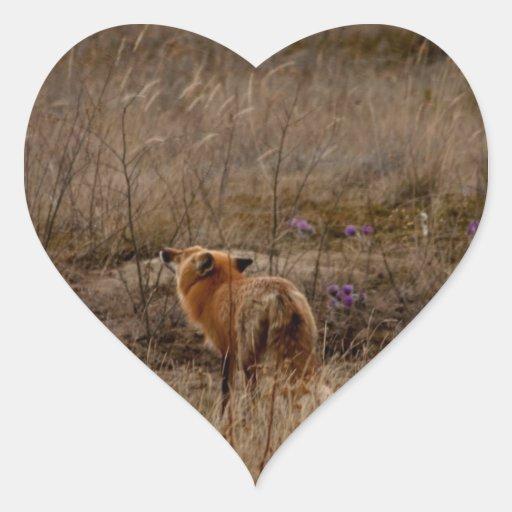 Fox que huele las azafranes pegatina en forma de corazón