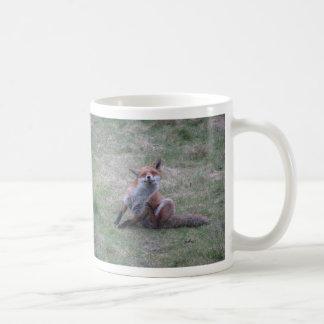 Fox que pica taza clásica