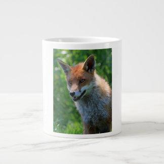 Fox red beautiful portrait photo jimbo mug