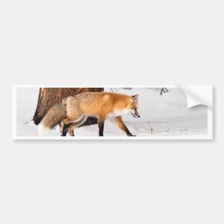 Fox rojo etiqueta de parachoque