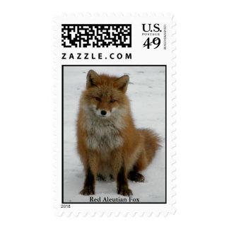 Fox rojo del Aleutian Franqueo